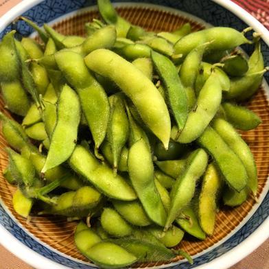 期間限定 お試し 熊本県産 枝豆 1キロ 野菜(豆類) 通販