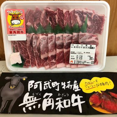 幻無角和牛スライス(300g) 300g 山口県 通販