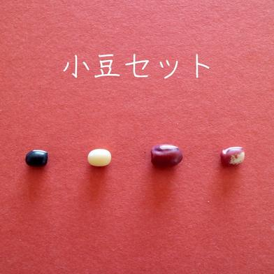 丹波篠山 めぶき農房 4種類の小豆セット 各200g入り 4種類を1袋ずつ 野菜(豆類) 通販
