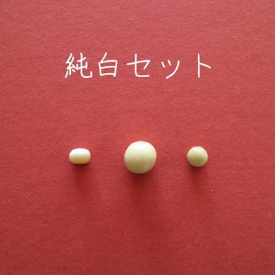 丹波篠山めぶき農房 純白セット(丹波白小豆、丹波白大豆、小粒白大豆) 各200g入り 3種類を1袋ずつ 野菜(豆類) 通販