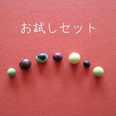 丹波篠山めぶき農房 7種の大豆50gずつのお試しセット 各50g入り 7種類を1袋ずつ 野菜(豆類) 通販