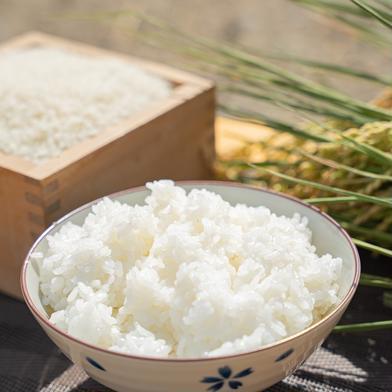 令和2年度産合鴨農法はぜ掛け米(精米)10kg 10kg 長野県 通販