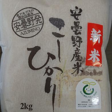 新米!令和2年産安曇野産こしひかり 特別栽培米 白米 2㎏ 2㎏ 長野県 通販