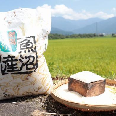 うちやま農園のお米 2㎏(精米) 2㎏ 新潟県 通販