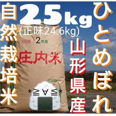 自然栽培 お米の旨味たっぷり氷温熟成 ひとめぼれ 令和2年産 山形県産 庄内産 庄内米 玄米25kg(正味24.6kg) 24.6kg 山形県 通販