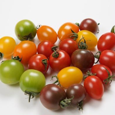 カラフルミニトマト3kg 3kg 野菜(トマト) 通販