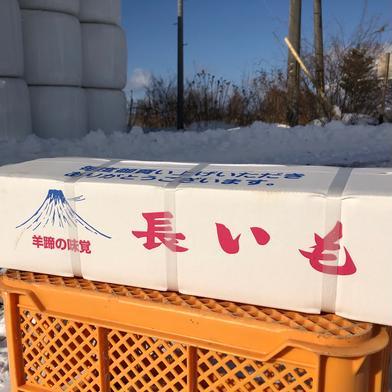 北海道真狩産 いんなみ農園の土付き長芋 5kg 5kg 野菜 通販