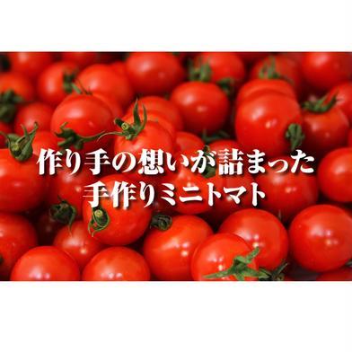 【希少な高濃度フルーツトマト】ソムリエミニトマト プラチナ1kg 1kg 野菜(トマト) 通販