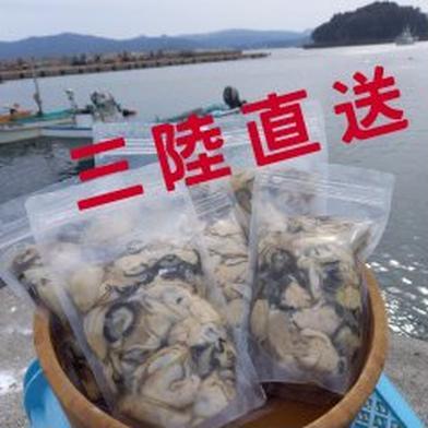三陸直送!牡蠣剥き身加熱用5㎏ 5㎏ 宮城県 通販