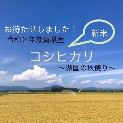 食欲の秋!減農薬栽培令和2年滋賀県産コシヒカリ玄米約20Kgリサイクル箱 約20Kg玄米 滋賀県 通販
