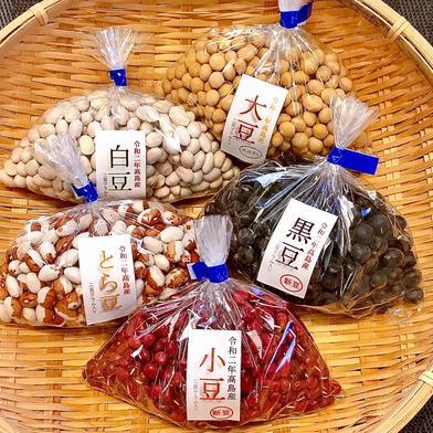 コロナに負けるな!巣ごもり生活応援 家で豆を煮て楽しむ5種類セット 5種類 各200g入り 滋賀県 通販