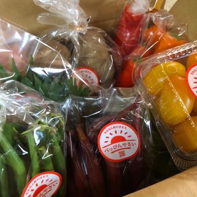 【8月発送分予約品!!】自然栽培べっぴんやさいお楽しみBOX(60~80サイズ) 5種類 果物や野菜などの宅配食材通販産地直送アウル