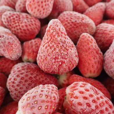 千葉県産 完熟冷凍いちご 1kgパック 急速冷凍 真空包装 1kg 千葉県 通販