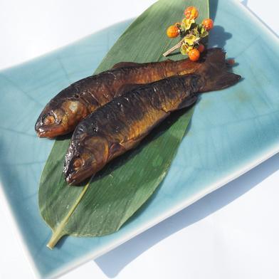 ニジマス甘露煮小サイズ20尾入×1袋 500g(20尾入)×1袋 魚沼 高野養魚場