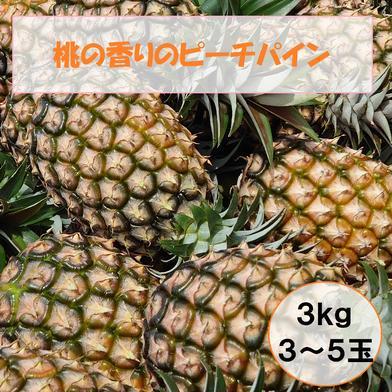 ますみ農園 桃の香りのピーチパイン 3kg(3〜5玉) 果物 通販