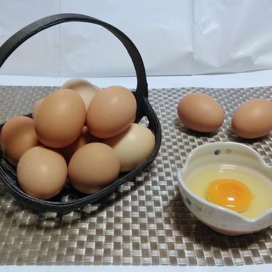 ぷりんっと濃い♪比内地鶏の平飼い卵28ヶ+割れ保証2ケ【黄身がうまい!】 28ケ+2ケ(割れ保証) 富山県 通販