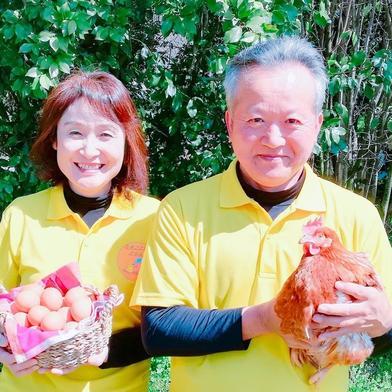 (冷凍食肉)さがらさんちの「熊本えごま鶏」 4パック入 300g 4個入 肉(鶏肉) 通販