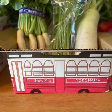 鈴木清友農園 野菜詰め合わせ60 2.0 食材ジャンル: 野菜 > セット・詰め合わせ 通販