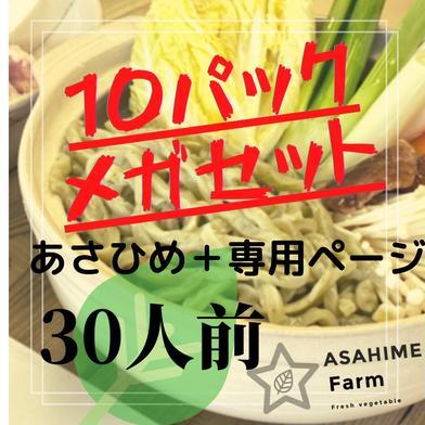 あさひめ生うどん10パック+あさひめ10パック専用 7kg 加工品(麺類) 通販