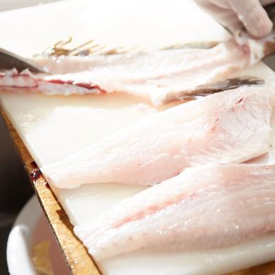 壱岐産高級クエ 三枚おろし 約1キロ 約1キロ 魚介類(その他魚介) 通販