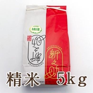 新潟県糸魚川産新之助 5kg 新潟県 通販