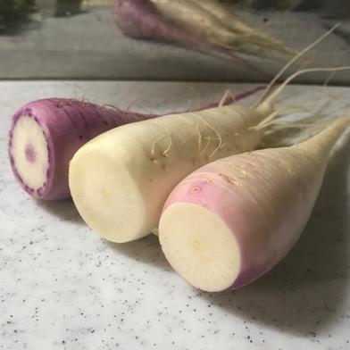 飲食店・大根好き必見‼️葉付きあやめっ娘大根3kg🥗 3kg 野菜(大根) 通販
