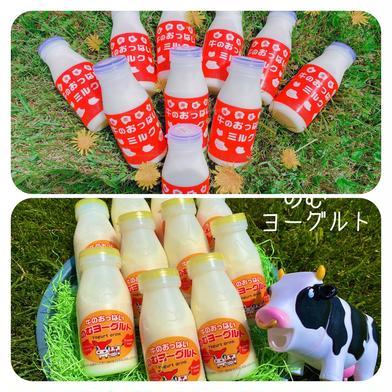 牛のおっぱいミルク5本&のむヨーグルト5本セット 200㎖×5本、150㎖×5本 乳製品 通販