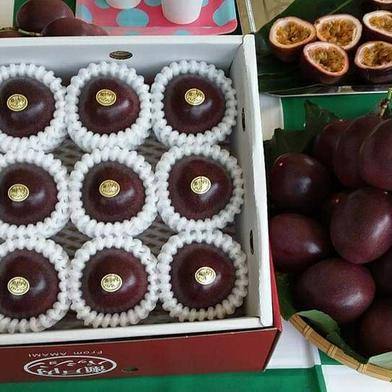 皇室献上パッションフルーツ農薬不使用12玉 贈答用×2箱 L玉12個入り×2箱 果物(その他果物) 通販