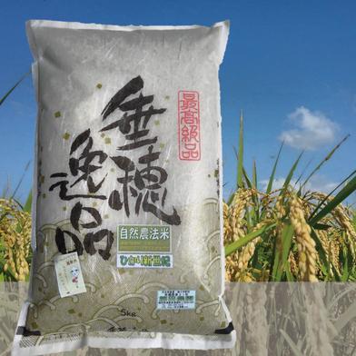 垂穂逸品【玄米/2kg】 2kg 福岡県 通販