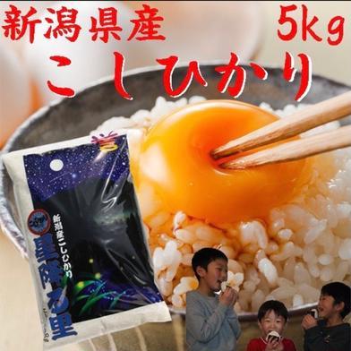 コシヒカリデラックス  白米  5kg  令和二年産  (送料込み) 5kg×1 新潟県 通販