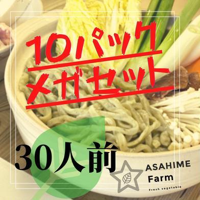 あさひめ生うどん『10パックメガセット』 4.5kg 加工品(麺類) 通販