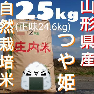自然栽培 お米の旨味たっぷり氷温熟成 つや姫 令和2年産 山形県産 庄内産 庄内米 玄米 25kg(正味24.6kg) 24.6kg 山形県 通販