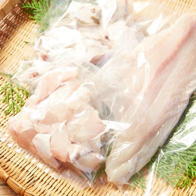 壱岐産高級 クエ鍋セット 2キロサイズ (4〜5人前) 約2キロ 魚介類(その他魚介) 通販