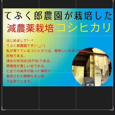 極力手間を掛けない超廉価版減農薬栽培コシヒカリ10 Kg白米 10 Kg 香川県 通販