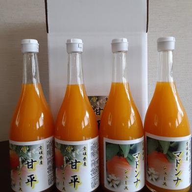 愛媛県産高級みかん甘平・マドンナジュースセット 720ml×4本 愛媛県 通販