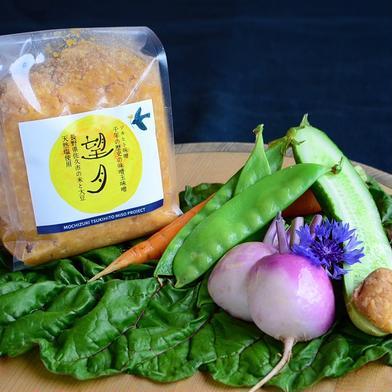手作りの伝統仕込み味噌玉味噌 望月 800g 調味料 通販