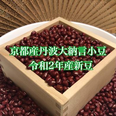艶のある大粒!丹波大納言小豆(200g×2)レシピ付き⭐︎ 200g×2袋 果物や野菜などの宅配食材通販産地直送アウル