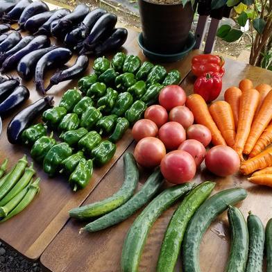 木島様特別定期便 果物や野菜などの宅配食材通販産地直送アウル