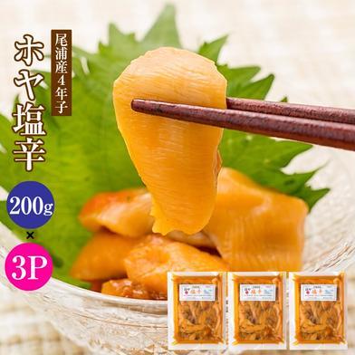 漁師手作りほどよい塩気のホヤ塩辛200g×3パック(お届け地域:北海道・本州・離島のみ) 200g×3パック 宮城県 通販