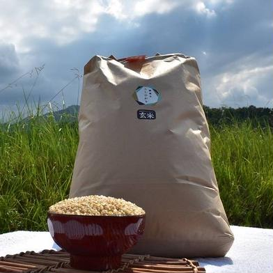 新米 瀬戸内讃岐 令和2年産コシヒカリ100%玄米10キロ 紙袋入り 玄米10Kg ふじもとファーム