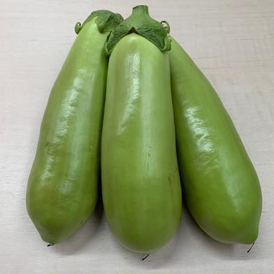 お試し・新鮮みどり茄子 5本入 野菜(茄子) 通販