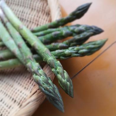 お試しサイズ✨岡山県産アスパラガス✨うますぎ注意 約500g 野菜(アスパラガス) 通販