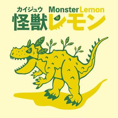 怪獣レモン 6玉 果物や野菜などの宅配食材通販産地直送アウル