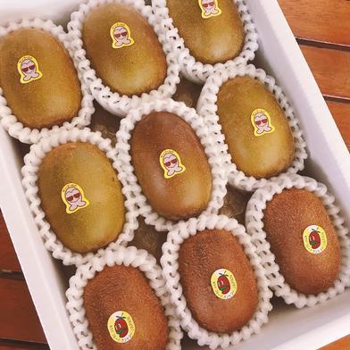 贈り物に是非!ゴールド系とグリーンキウイの2種類セット 9個入り 果物(その他果物) 通販