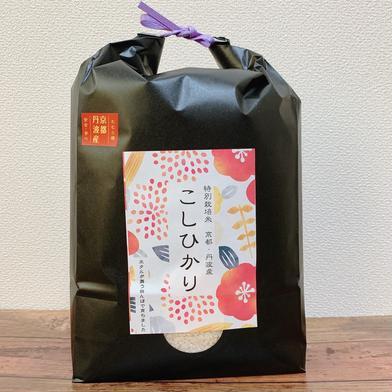 京都丹波コシヒカリ10kgとミルキークイーン米粉1kg×2袋 12kg 京都府 通販