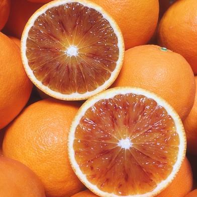 とにかく食べてみて*ブラッドオレンジ・タロッコ2K 2K 8個から10個程度 果物(柑橘類) 通販