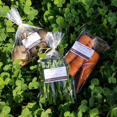 さくま農園「野菜の贈り物」 2~4㎏ 食材ジャンル: 野菜 > セット・詰め合わせ 通販