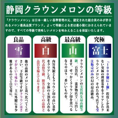 静岡クラウンメロン 山等級Mサイズ 約1.2~1.3Kg 果物 通販