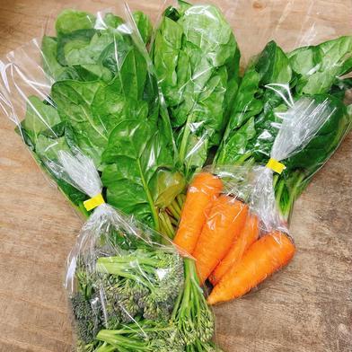 季節野菜詰め合わせセット 約2.0kg 野菜 通販