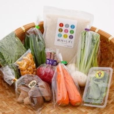 岩手県雫石町産 季節の野菜とお米のセット 米(1kg)季節の野菜(5〜8点) 岩手県 通販